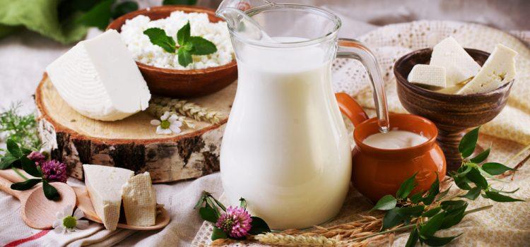 Latte di capra senza lattosio, ottimo anche per intolleranti
